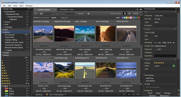 Daminion Media Browser