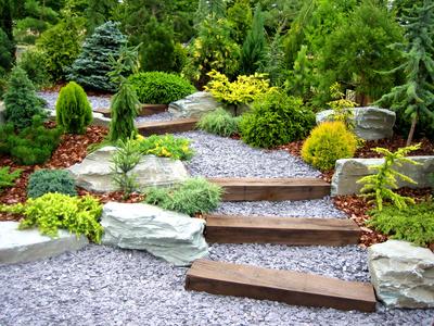The Garden. Conceptual Landscape Design