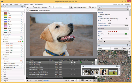 Daminion 3.7 - Digital Photo Management Software