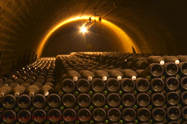 Champagne bottles stacked in an underground vaulted cellar