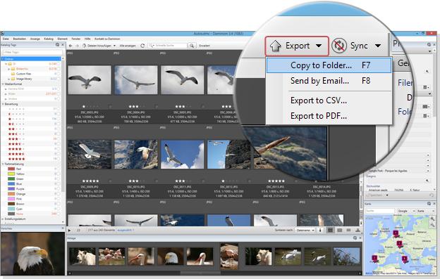 Export-01_ENG