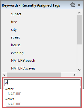 """Quick search inthe """"Recently Assigned Tags"""" dialog"""