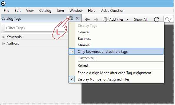 Working with View Presets in the Catalog Tags panel