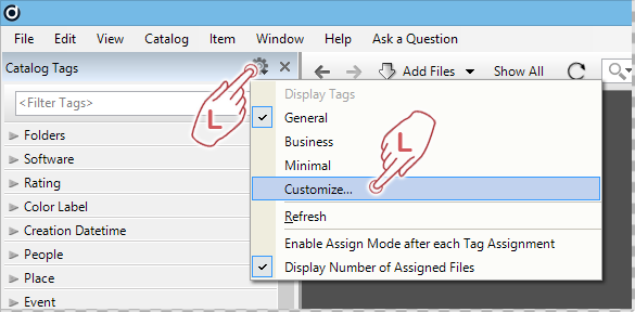 Customize Catalog Tags