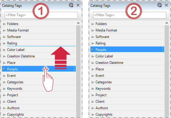 Manually tags sorting in the Catalog Tags Panel