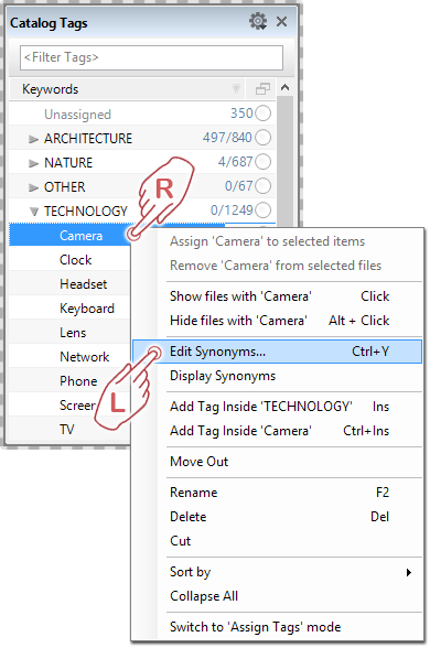 Launching the Synonym Editor to link synonyms to keywords