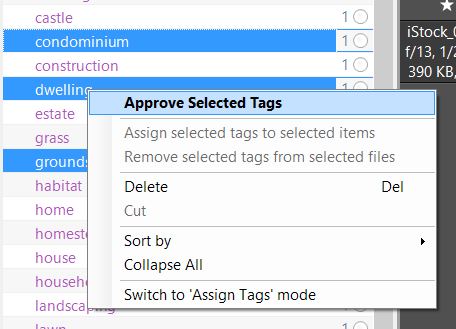approved-unapproved-tags4